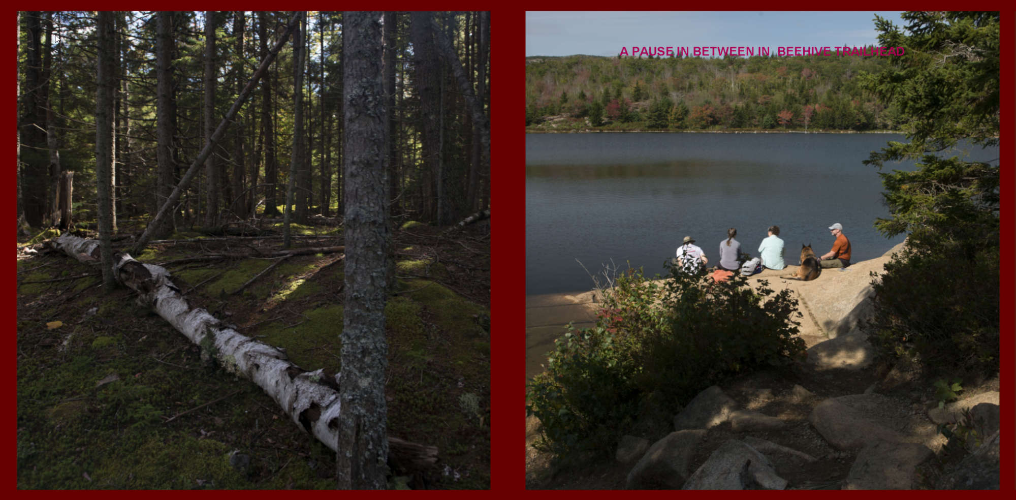 Fall in New-England Album - Pages 10-11: A pause
