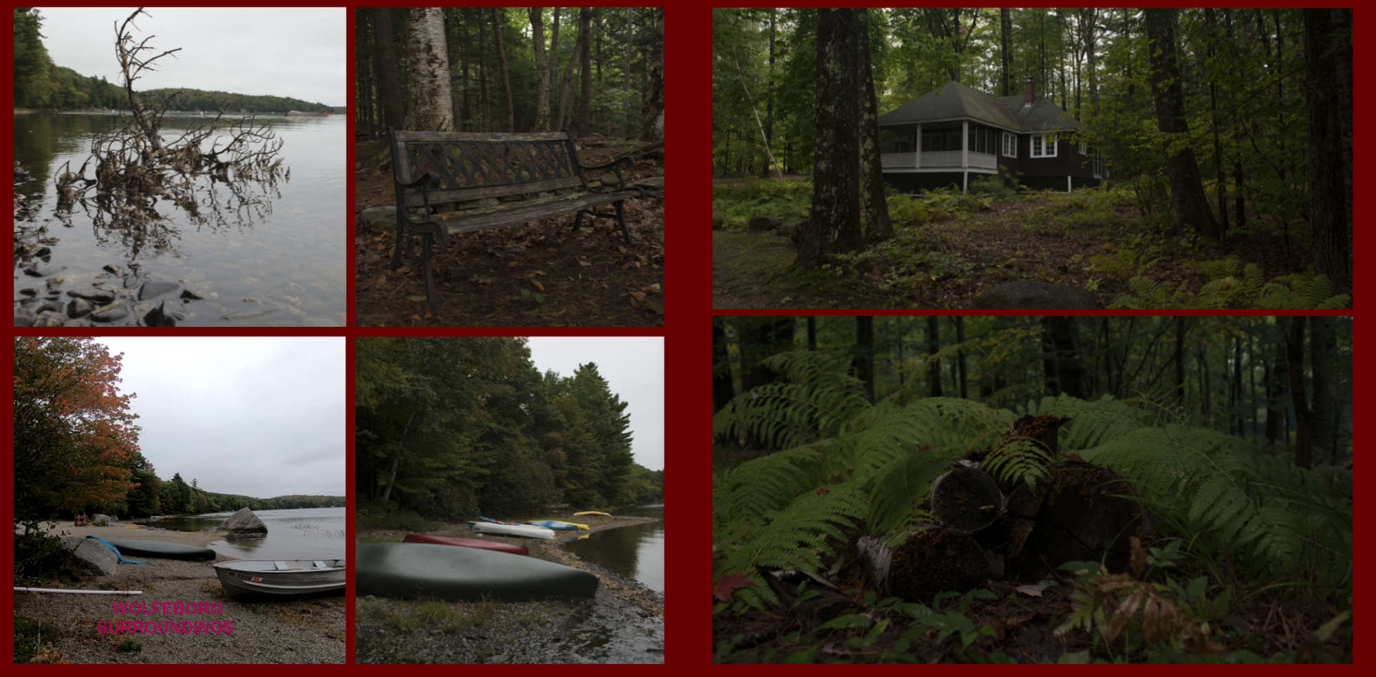 Fall in New-England Album - Page 38: Wolfeboro Lake Page 39: A house in the woods and giant fern plants