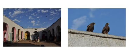 Page 62: Arches in courtyard / Page 63: Two black buzzards on roof