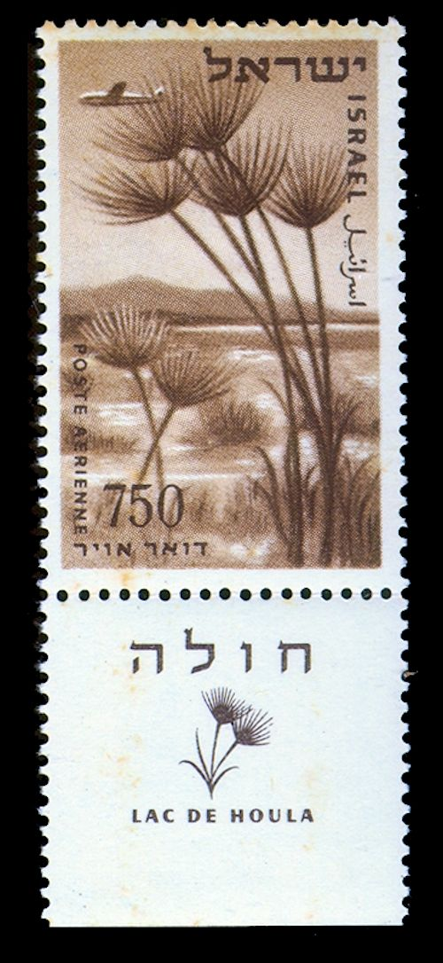 Israel National Trail - Section 02: The KKL - JNF Box