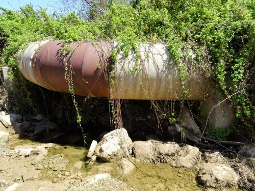 Jerusalem Trail: Mitered water pipe, overgrown with vegetation, bringing water to Jerusalem - © Deniz Bensason