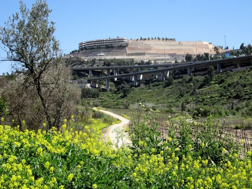 Jerusalem Trail: Eternal nature, modern transportation, and the way of all flesh - © Deniz Bensason