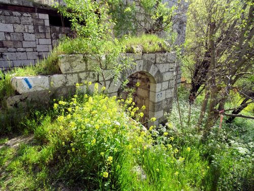 Jerusalem Trail: Trail Lifta Houses and weeds, architectural details - © Deniz Bensason