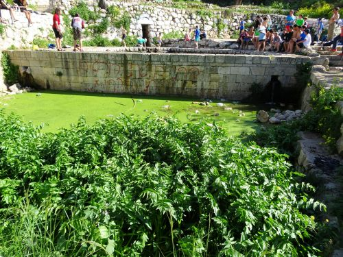 Jerusalem trail: Lifta's lower collection pool with duckweed, litter, and graffiti - © Deniz Bensason