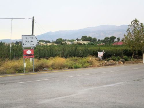 Israel National Trail - Section 01: The road to Kfar Yuval