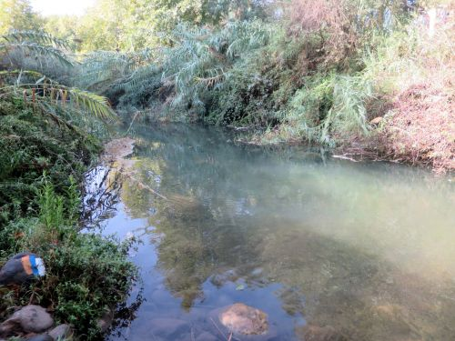 Israel National Trail - Section 01: The Dan Creek with INT sign on left bank