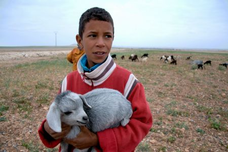 Children of the World: Morocco; boy holding a lamb