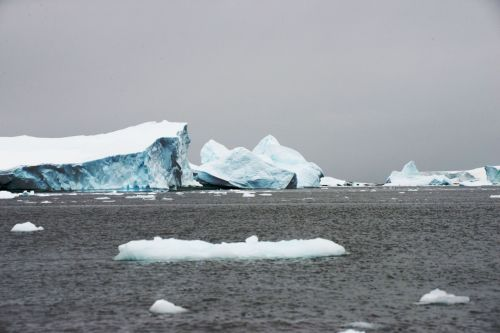 Landscapes/Icebergs and Pack ice - Lemaire Channel-Pleneau Island: Iceberg, first impressions