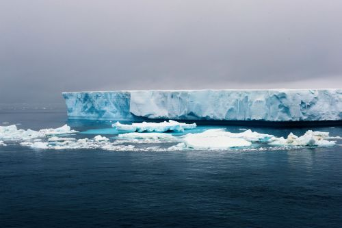 Landscapes/Icebergs and Pack ice - In Antarctic Sound between Brown Bluff and Hope Bay, Tabarin Peninsula: Exploring a '-berg' (Take: 1)