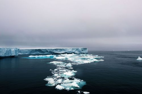 Landscapes/Icebergs and Pack ice - In Antarctic Sound between Brown Bluff and Hope Bay, Tabarin Peninsula: Exploring a '-berg' (Take: 2)