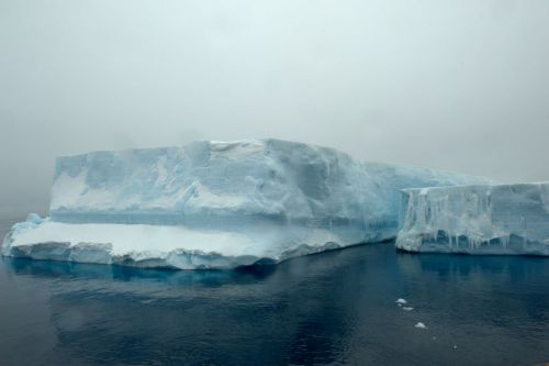 Landscapes/Icebergs and Pack ice - In Antarctic Sound between Brown Bluff and Hope Bay, Tabarin Peninsula: Exploring a '-berg' (Take: 4)