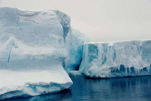 Landscapes/Icebergs and Pack ice - In Antarctic Sound between Brown Bluff and Hope Bay, Tabarin Peninsula: Exploring a '-berg' (Closing in)
