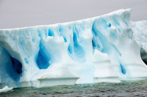 Landscapes/Icebergs and Pack ice - Lemaire Channel-Pleneau Island: Blue caves in white ice