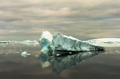 Landscapes/Icebergs and Pack ice - Lemaire Channel-Pleneau Island: Icebergs reflecting in calm waters