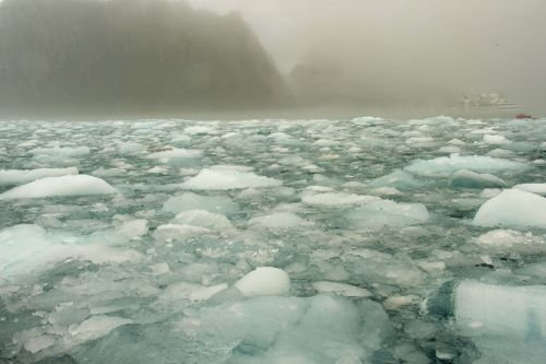 Landscapes/Icebergs and Pack ice - Elephant Island: Pack ice with boat in the background (from zodiac)