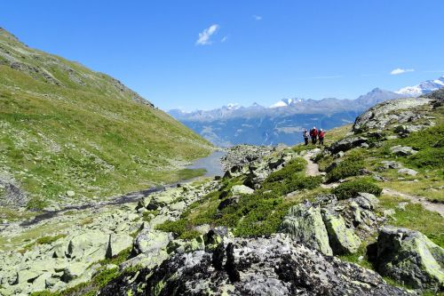 Landscapes/Mountains - Switzerland, Canton Valais:  View of the Mattertal from the Festihorn mountain. Trek from  Grächen to Gruben
