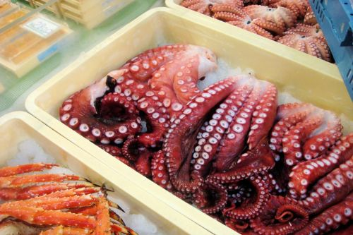 Markets: Fish & Meat - Tokyo fish market, Japan: Octopus tentacles