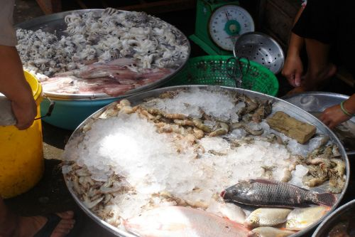 Markets: Fish & Meat - Seafood bowl, Hồ Chí Minh City, Vietnam: Fish, shrimps, squid and octopus on ice covered trays