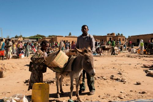 Markets-Patrons & Punters - Mek'ele market, Tigray, Ethiopia: Father helping daughter load the donkey