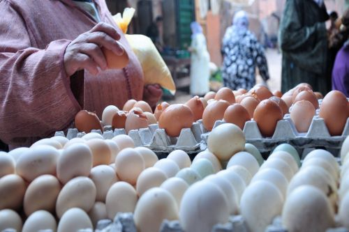 Markets-Products - Marrakesh market, Morocco: Cherry-picking eggs