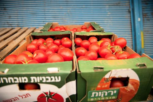 Markets: Fruit & Veg - Market, Be'er Sheva, Israel: Tomatoes in boxes