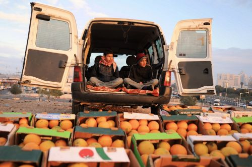 Markets-Vendors - Beersheba market, Israel:  Two young boys selling oranges