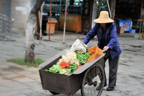 Markets-Vendors - Dali market, China: Old lady pushing a cart