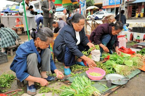 Markets-Vendors - Guilin market, China: Women in selling various kinds of green salads