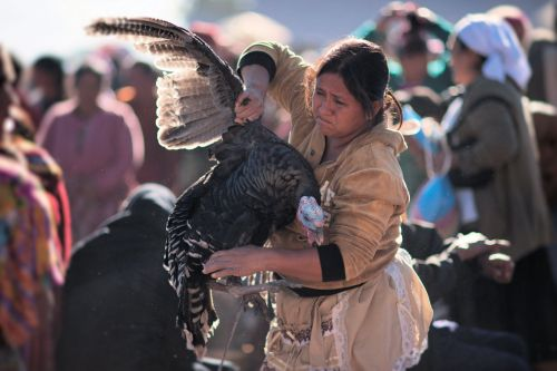 Markets-Vendors - Almolonga animal market, Guatemala: Woman with large turkey