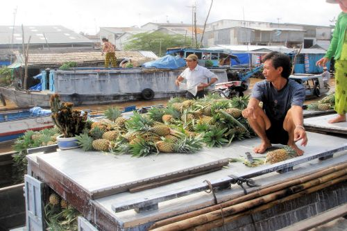 Markets-Vendors - Cai Rang Floating Market, Can Tho City, Vietnam: The pineapple boat