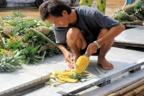 Markets-Vendors - Cai Rang Floating Market, Can Tho City, Vietnam: Peeling  a pineapple