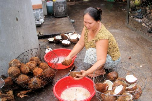 Markets-Vendors - Vietnam: Woman draining and splitting coconuts