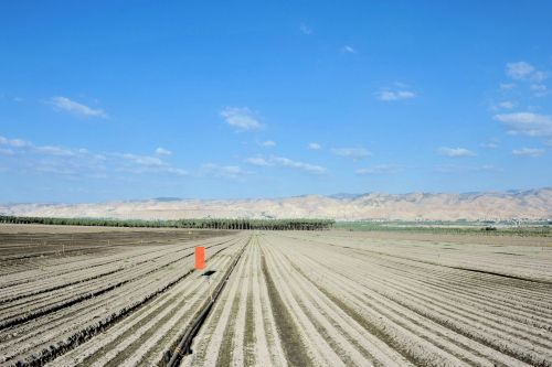 Living-Natue: The Mineral Kingdom - Israel, Beit She'an Valley:  Agricultural moonscape