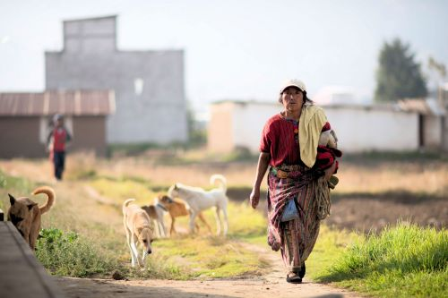 Faces of Guatemala: A farmer with her dogs