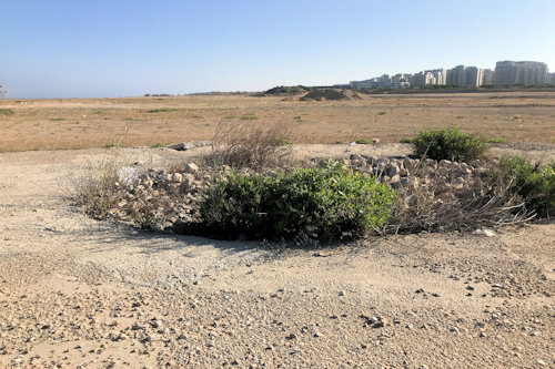 Sde Dov-May 2020: Looking North East (Lamed Quarter)