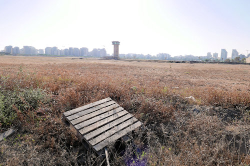 Sde Dov-May 2020: An abandoned palette in a deserted field of a vacated airport