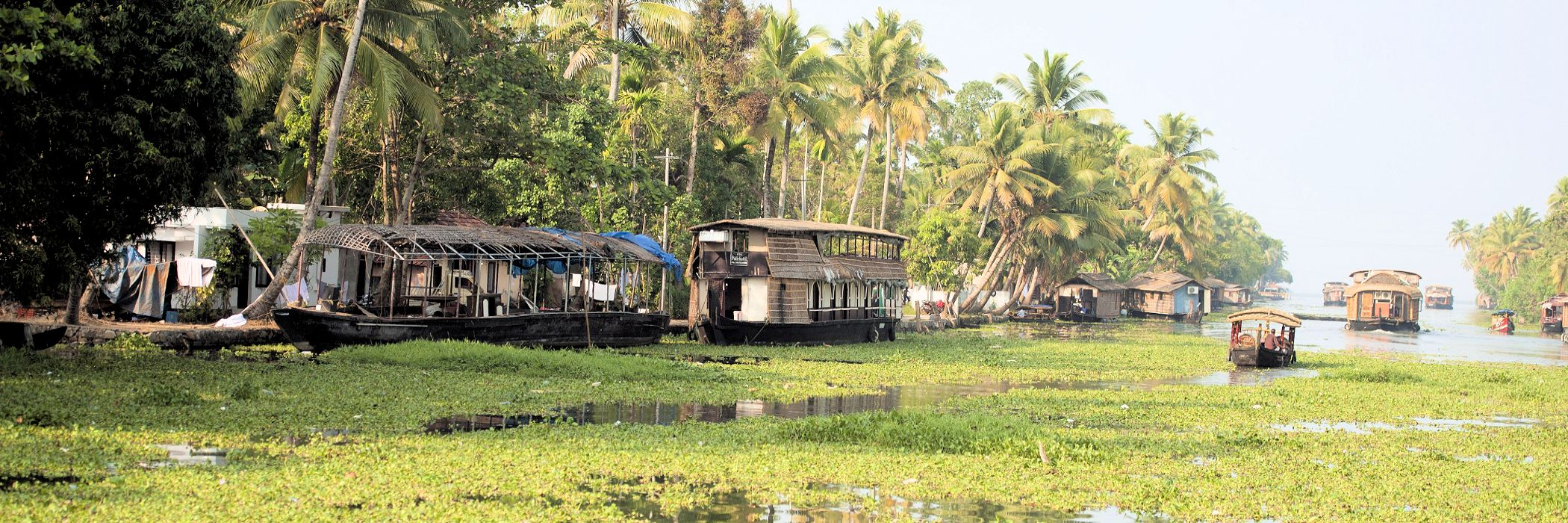 Allepey, Kerala, India: Houseboats on river